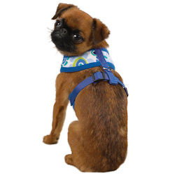 Modern Print Harness - Blue