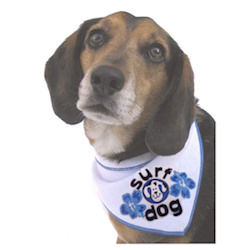 SURF DOG BANDANA (ISS)