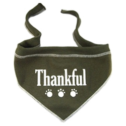 Thankful Bandana