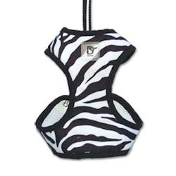 Zebra Padded Harness & Leash Set