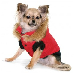 Winter Vest/Jacket - Red