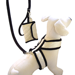 'Chanel' Harness & Purse Set