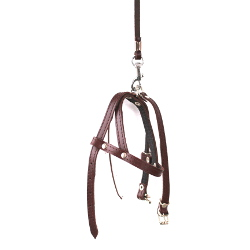 Leather Collar & Harness & Leash Set - Brown