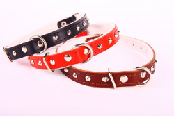LEATHER COLLAR WITH STUDS - RED ()